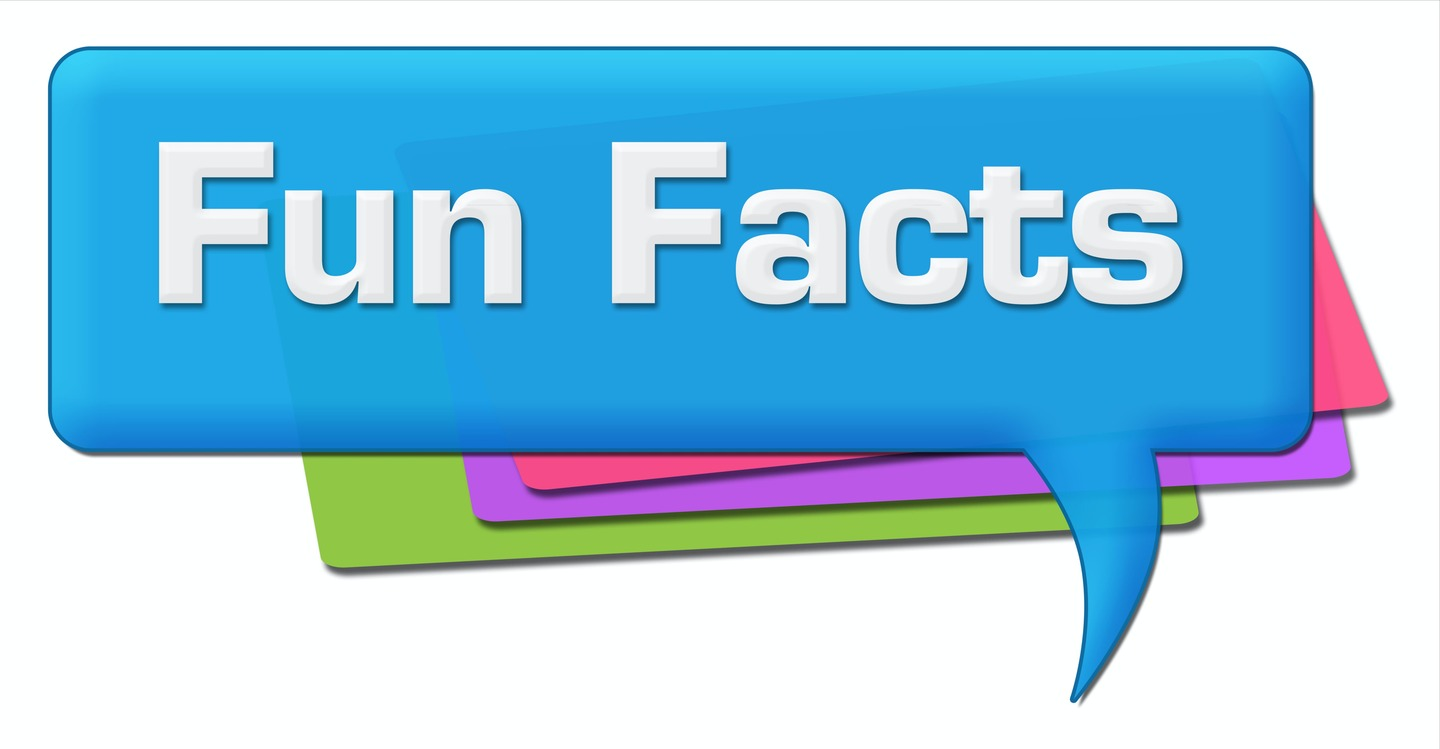 Fun Facts About Dentists